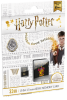 microSD UHS-I U1 Harry Potter Gryffindor 32Gb pack