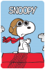 U700 Power Essentials front Snoopy 01